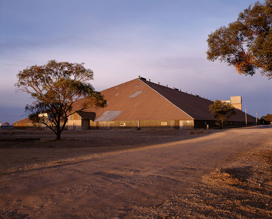 A colour photograph of a large corrugated iron shed in the shape of a pyramid extends into the distance. It is flanked by eucalyptus trees and a dirt road.