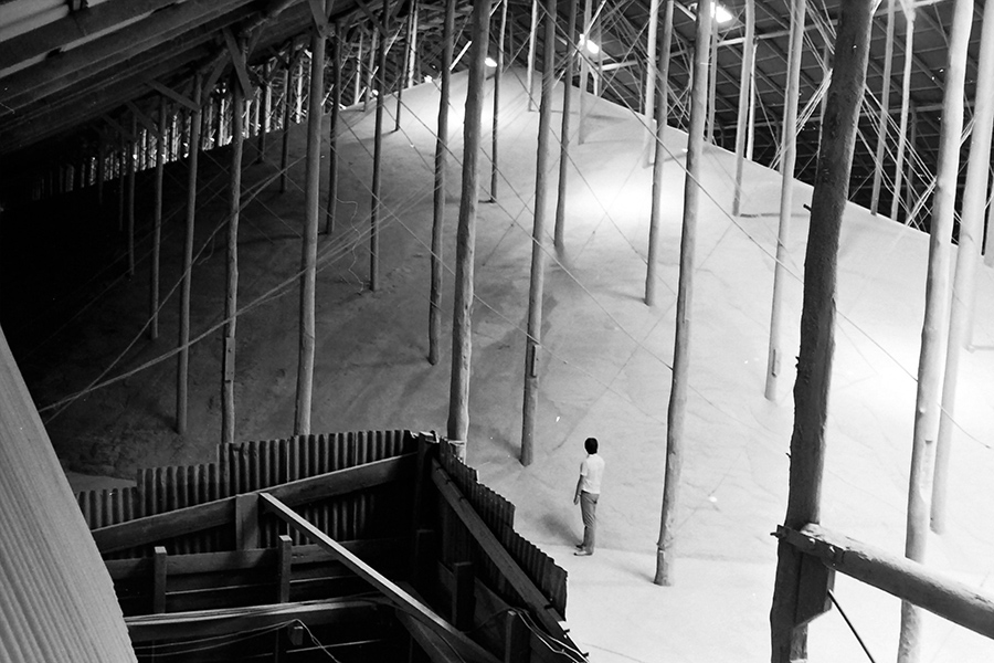 A black and white photograph of the interior of a storage shed. A large pile of grain fills most of the space and almost touches the roof. A man stands at the bottom of the pile.
