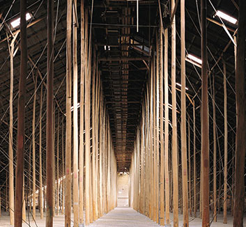 A colour photograph of the interior of the Murtoa Grain Store features rows of tall slender timber polls set into the ground. The number and height of the polls create a tunnelling effect.
